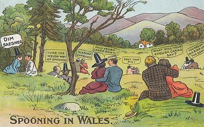 Spooning in Wales Comic Antique Welsh Postcard