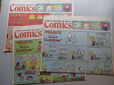 Sunday Newspaper Comics THIRTY Pages Philadelphia Inquirer From 1986