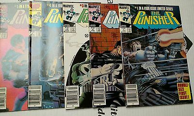 The Punisher #1-5 Limited series 1987 Marvel 1st Solo Punisher comics 1 2 3 4 5