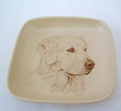 Vintage Honiton Pottery Dish –Golden Retriever Image In Base—By Jane Faber?