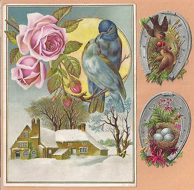 5 1880s90s Victorian Era Art Forms BIRDS & Flower Scenes