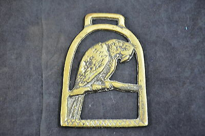 Vintage Horse Brass Medallions on Leather Loose Melancholy Parrot  #20  1410