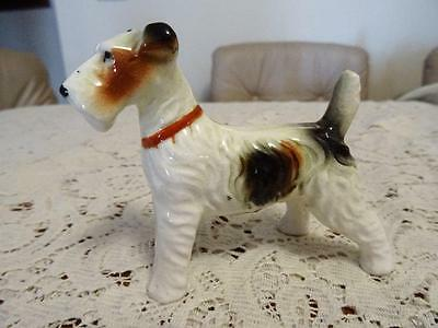 1950s HAND PAINTED FINE QUALITY CHINA WIRE HAIRED FOX TERRIER