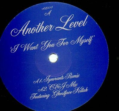 Another Level I Want You For Myself Vinyl Single 12inch