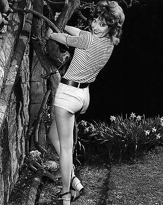 """Jacki Piper Carry On Films 10"""" x 8"""" Photograph no 18"""