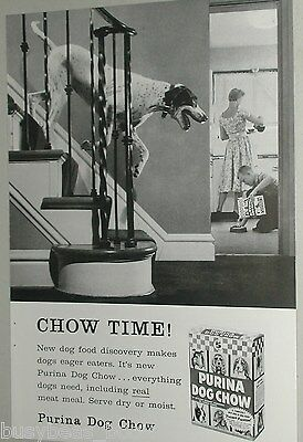 1958 Purina ad, Purina Dog Chow, Pointer, Dog food