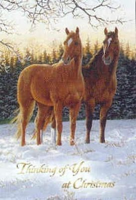 Xmas Cards Two HORSES in the Snow Holiday Cards 10 per box