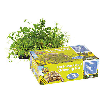 ProRep Tortoise Feed Growing Kit (Full Kit) Weed Seeds Dandelions