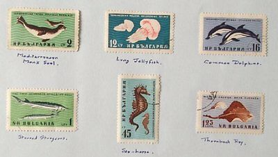 1961 Selection of 6 Mint & used Stamps from Bulgaria-Black Sea Fauna  No BU-009.