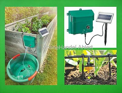 Solar Irrigation System Plants Water Dispenser Watering Pump Greenhouse