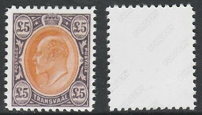 Transvaal (739) 1903 KE7 £5 -  a Maryland FORGERY unused