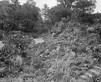Newstead Abbey, Nottingham, The Rock Garden * Rare Vintage View*hudson & Kearns