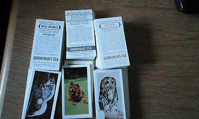 Hornimans Tea cards hundreds from 3different titles,plus rare order card