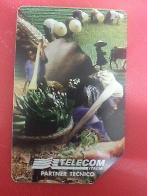 International Fund Agricultural Development. Collectable Used Italian Phone Card