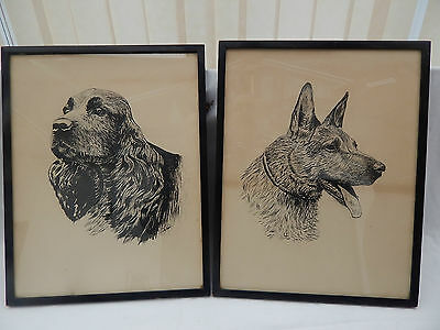 2 DOG INK DRAWING FROM THE 1950s IN ORIGINAL WOOD FRAMES SIGNED E.D.