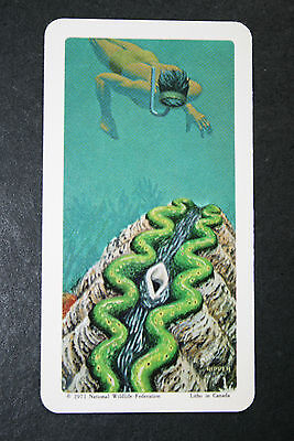 Giant Marine Clam & Diver     Illustrated Card  # EXC