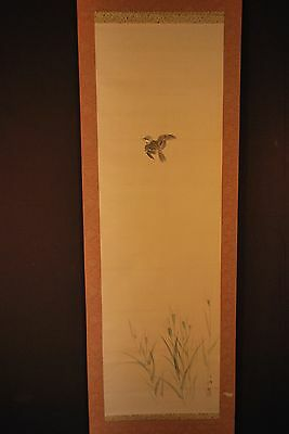 Japanese Painted Sumi-e Scroll / Sparrow in The Grass