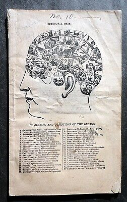 1855 Synopsis of Phrenolgy w Patients Phrenological Reading by Dr. D P Butler