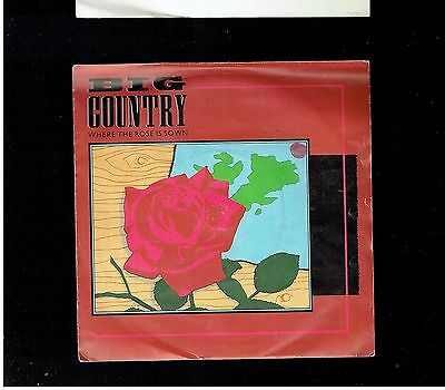 Big Country Where The Rose Is Sown Ps 45 1984