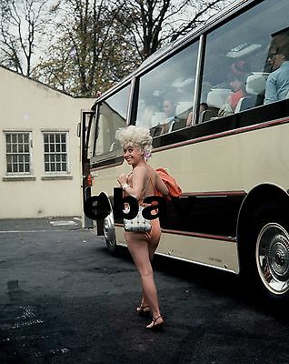 """Barbara Windsor Carry On Films 10"""" x 8"""" Photograph no 99"""
