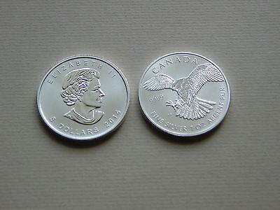 Kanada, Birds of Prey 2014 Silber 1oz