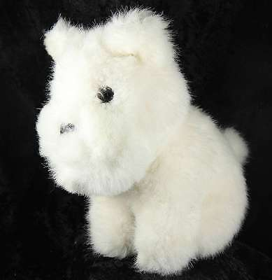 Scottish Terrier 7.5 inches tall in white terrier pedigree breed crufts