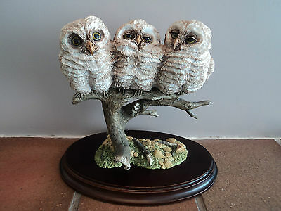 Vintage Large (Country Artists) Owl Fledglings - Gorgeous Item (Mint Condition.