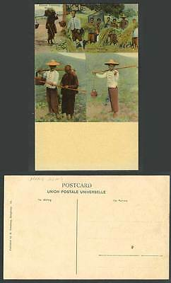 Hong Kong China Old Colour Postcard Chinese Labouring Woman Farmers and Children