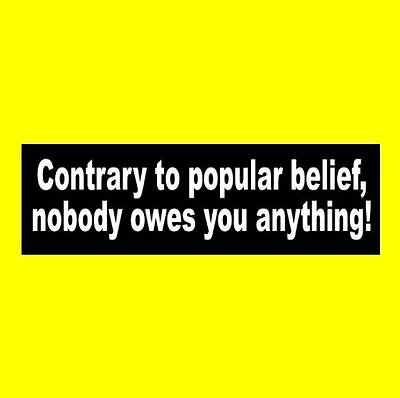 """NOBODY OWES YOU ANYTHING"" Anti Liberal Obama Hillary BUMPER STICKER, funny, GOP"