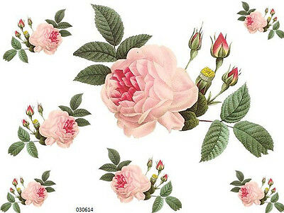 XXL ReDouTe CaBbaGe RoSe ShaBby WaTerSLiDe DeCALs
