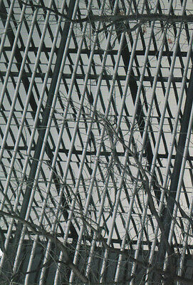 Barbed Wire London Great Ormond Street Hospital Photography Winner Postcard