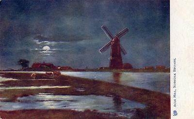 THE NORFOLK BROADS Acle Mill at Night old Tuck Postcard used 1904