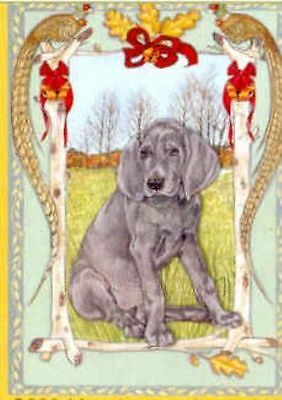 Ten Cards Pack WEIMARANER Dog Breed Christmas Cards USA made