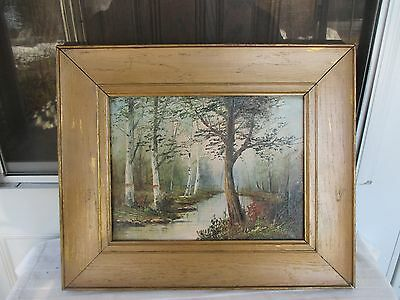 Antique  1911 Signed D A FISHER Oil on Canvas of Birches-Stream-Woods-Beautiful!