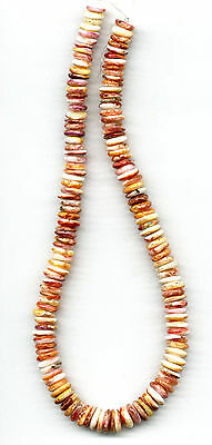 "ORANGE SPINY OYSTER BUTTON BEADS - 333B - 15.75"" Strand"