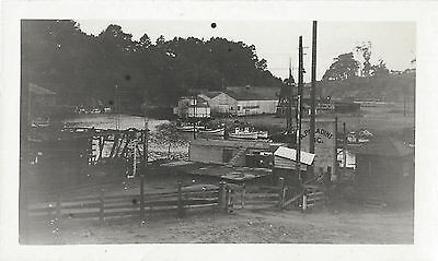 A. Paladini Seafood Fishing Co Operation Pier Boats Buildings 1940s ? Snapshots