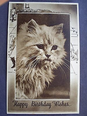 Cat Postcard By Photochrom Co.ltd Royal Tunbridge Wells  Postal Stamped 1942.