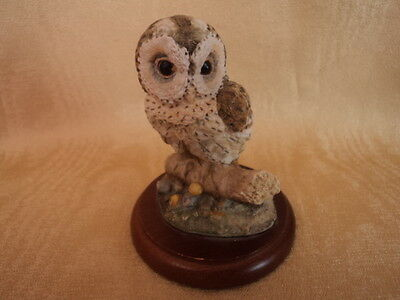 Vintage Hand Painted/crafted Little/tawny Owl Fledgling (Mint Condition) - Super