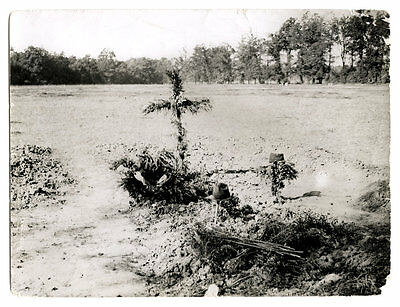 World War One Ww1 Original Photo - French Soldiers Graves In France
