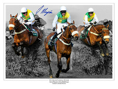 • HAND SIGNED 16x12 MONTAGE PHOTO HORSE RACING JASON MAGUIRE