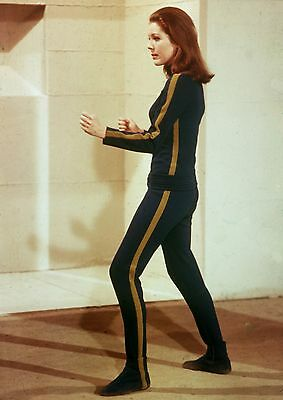 "Diana Rigg The Avengers 10"" x 8"" Photograph no 1"