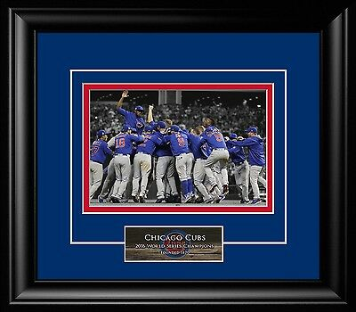 2016 Chicago Cubs World Series Champions