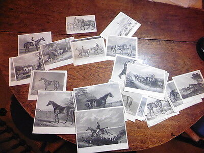 Group Of Circa 50 Fine 19Thc Steel Engravings Of Racehorses Horse Racing Prints