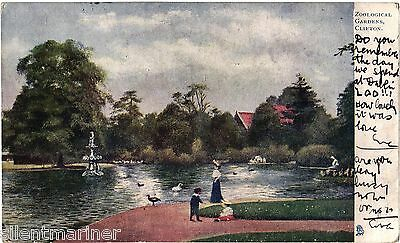 Clifton, Zoological Gardens, Tuck Oilette postcard, posted 1905