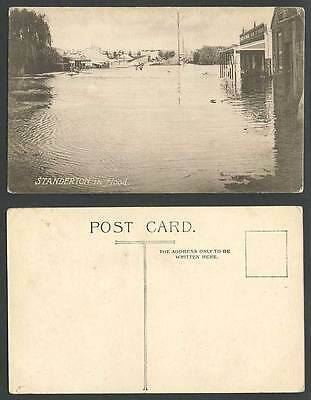 South Africa Standerton in Flood Disaster Boat Flooded Street Scene Old Postcard