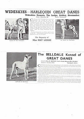 Great Dane working breed dog kennel clippings  breed x 50 pedigree