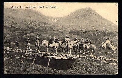 "Iceland: Vintage View Card ""Horses"" ca. 1910"