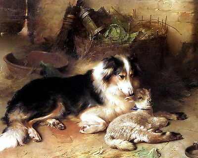 WALTER HUNT Print Farm COLLIE Dog Foster Mother MOTHERLESS Orphan Lamb SHEEP