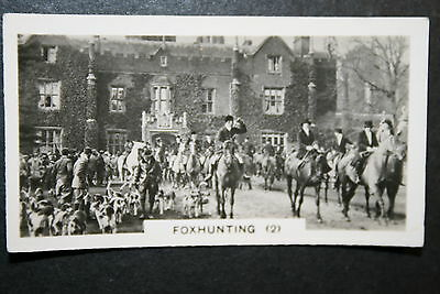 Old Berkeley Foxhounds   Fox Hunting Vintage 1920's Photo Card  VGC
