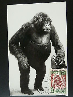 monkey gorilla maximum card 1963 Gabon 53827